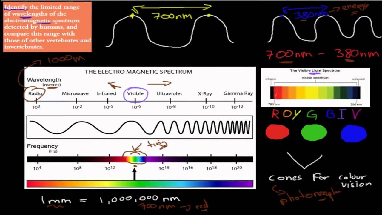 the em spectrum The ogc electromagnetic spectrum domain working group (em spectrum dwg.