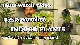 കേരളത്തിൽ ഇൻഡോർ പ്ലാന്റ്സ് മേടികാൻ പോകുന്നതിന് മുൻപ്  ഇത് കാണണം.. How To Choose Indoor Plants