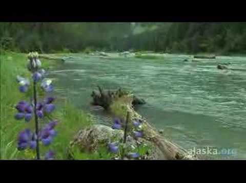Alaska.org - Haines Alaska: Everything You Dreamed ...