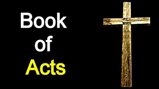 Book of Acts - Audio Bible Reading ( New Testament / NASB )