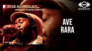 José Rodrigues - Ave rara