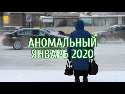 🔴 Синоптики пообещали россиянам аномально теплую погоду в январе