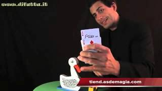Vídeo: Pato Atrapa Cartas