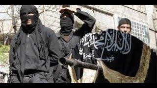 """Oğuz Demiralp: """"operasyonla Suriye'deki IŞİd'lilerin Bakımını üstle"""