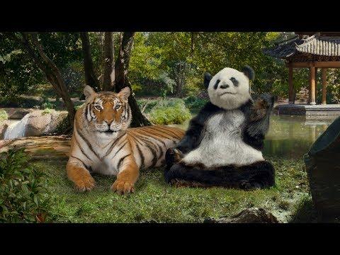 Move over, Panda. Wei Better Orange Chicken is here.