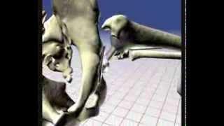 Arco de Movimento da Prótese Total de Quadril (artroplastia)