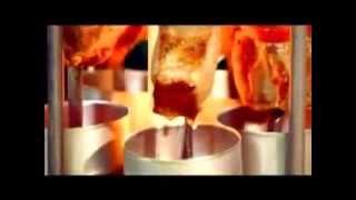 Шашлычница электрическая Express (Экспресс)(Купить всего за 1480 рублей в магазине AgmaShop с доставкой по всей России: http://agmashop.ru/item/1802-shashlychnica-ehlektricheskaya-express-ehk., 2013-12-02T08:14:45.000Z)