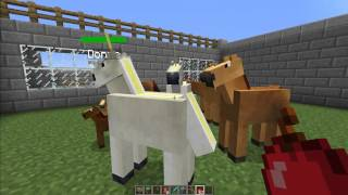 MINECRAFT [V1.2.5] Mo' Creatures Mod Showcase (Minecraft Zoo)