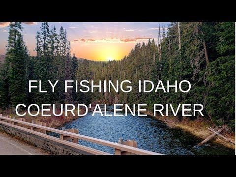 Fly Fishing Coeurd'alene River Idaho