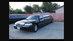 Limos & Buses