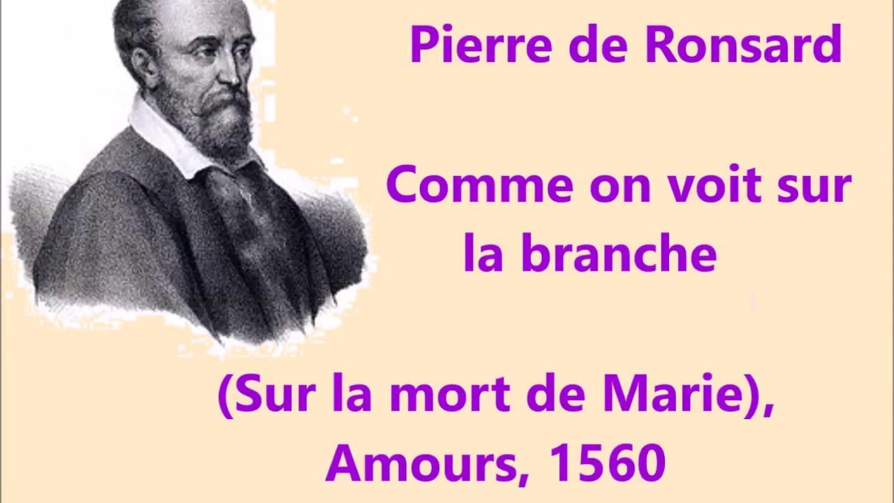 Pierre De Ronsard Poème Comme On Voit Sur La Branche Sur