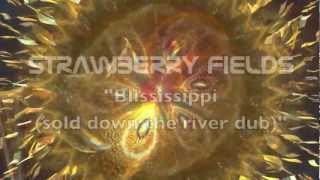 Strawberry Fields - Blississippi (sold down the river dub)