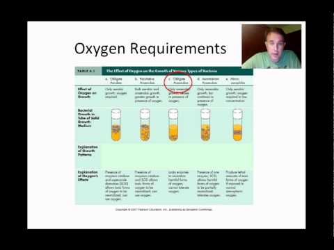 Microbial Growth Part 1