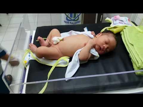 Haii guys divideo kali ini saya mau kasih tau bagaimana mana perawatan bayi baru lahir.. Kebetulan kemarin ada bayi baru lahir....