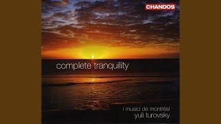 Piano Concerto No. 2 in F Major, Op. 102: II. Andante