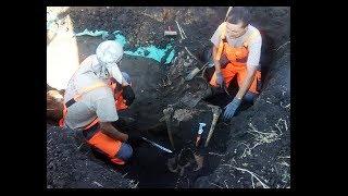 Рештки десятків солдатів розкопали в полях на Харківщині — Барвінківський котел