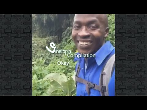 Hi Okay Vine Compilation (Okaymovement) Hi Ok