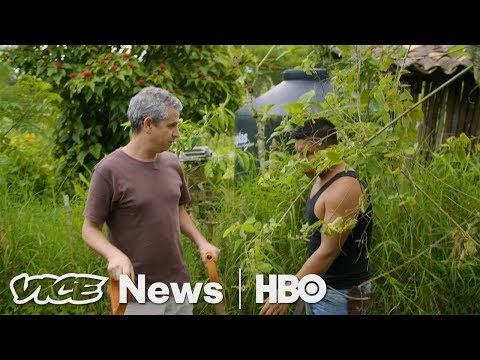 This Farm in Mexico is Growing a Solution to Climate Change (HBO)