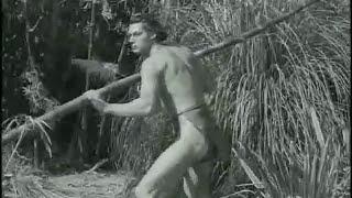 Johnny Weissmuller-Tarzan Boy