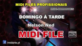 ♬ Midi file  - DOMINGO À TARDE - Nelson Ned