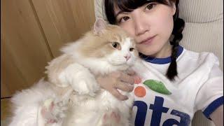 独身ヒモノ女と外の世界を知らない猫の日常【短編映画】【酒村ゆっけ、】