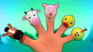 Dedo animal família | Canções e rimas para crianças | Finger Family For Kids | Animals Finger Family