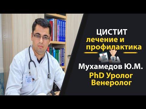 Цистит. Лечение и профилактика.  Врач Уролог Мухамедов Юсуп Межитович