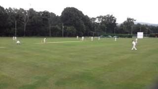 Aston Ingham Village Cricket