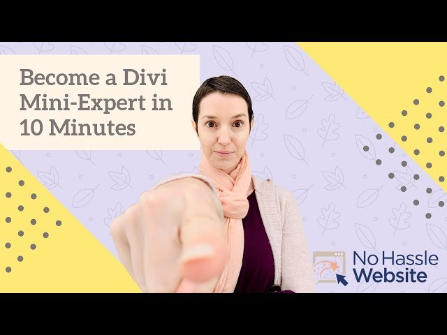 No Hassle Tutorials: Become a Divi Mini-Expert in 10 minutes