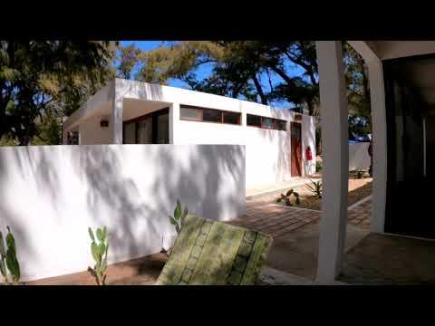 Vlog 11: A walk through Liquid Dive Adventures, Tofo Mozambique