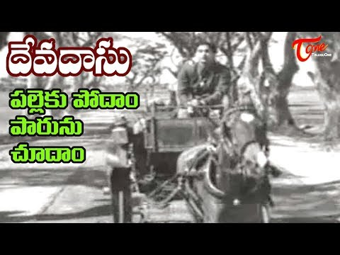 Old Hit Songs | Devadasu Movie | Palleku Podham Song | ANR | Savitri - OldSongsTelugu