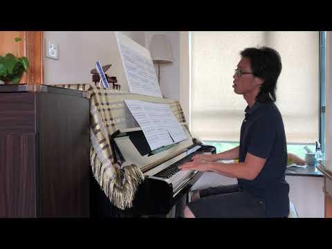 Bach: Flute Sonata in G minor, BWV 1020 - 1st Movement - Piano Part [Slow Tempo]