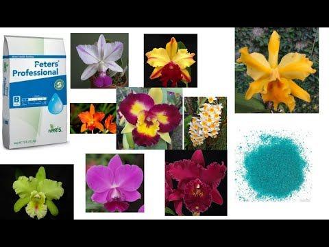 CORRE! Apenas R$ 14,90! Fertilizante Peters Profissional P/ Mudas Orquídeas E Flores