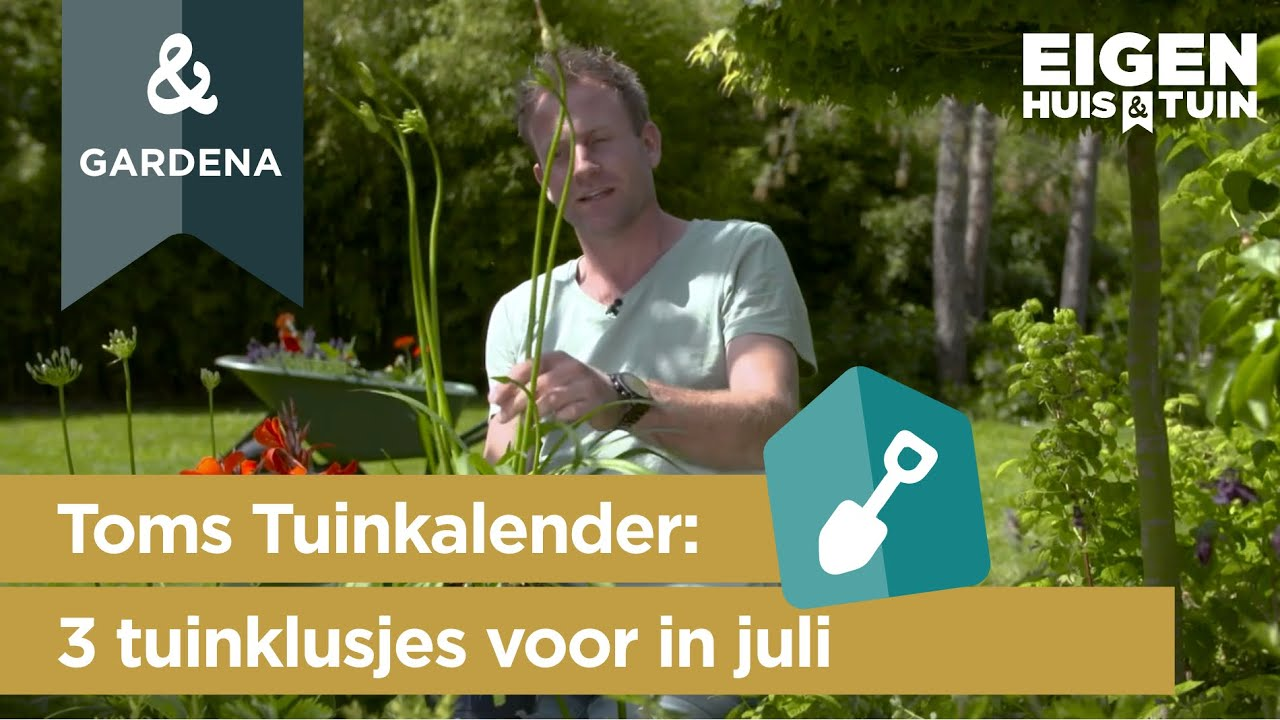 Juli: 3 klusjes die je deze maand in de tuin kunt doen | Toms Tuinkalender | Eigen Huis & Tuin
