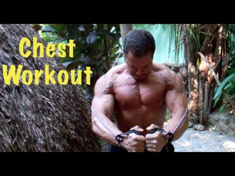 Jungle Muscle CHEST & TRICEPS Workout!