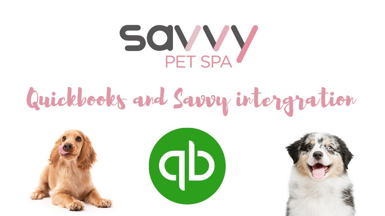 Quickbooks & Savvy Integration   PLEASE READ NOTES IN DESCRIPTION TOO!