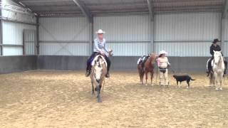 Daelshof - Horse & Dog Trail - Tina, Lena und Paul - Siegerehrung