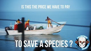 To Save A Species