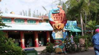 Flame Tree Barbeque - Nhamo