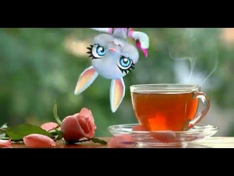 смешная зайка💟 С Добрым Утром Мое Солнце!!!Смску шлю Любя!!!!