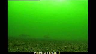 тест видеорегистратора  на первом озере.