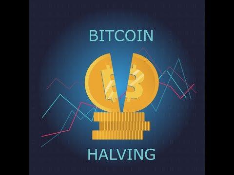 The Surprisingly Interesting Bitcoin Halving History