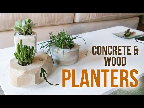 DIY Modern Concrete & Wood Planters - HGTV Handmade
