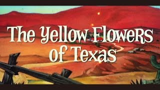 Kojima Mayumi | The Yellow Flowers of Texas (Official Music Video) ...