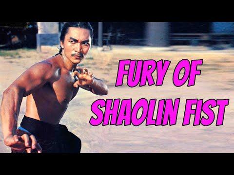 wu-tang-collection---fury-of-shaolin-fist-(subtítulos-en-espaÑol)
