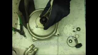 HasSse´s Aerox - Del 25 - Renovering vattenpump