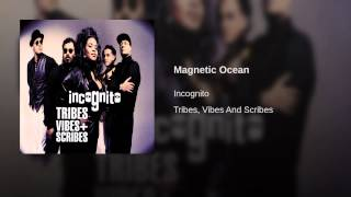 Magnetic Ocean