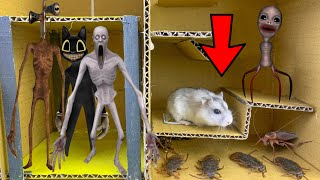 🐹😱 ALL MONSTERS Trevor Henderson Hamster Obstacle Course Maze With Traps 😱
