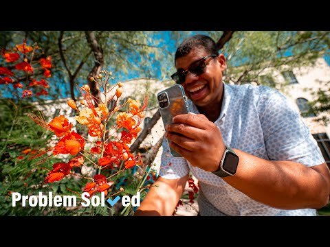 Simple tips for taking better photos on your smartphone   Problem Solved