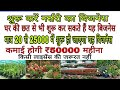 Start Plant Nursery Business On The Roof Of Your House.